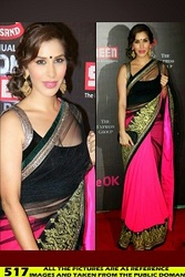 EID COLLECTION 2014 sale! sale! sale! Buy Saree wore by Sophie