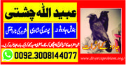 Marry your love with (Manpasand shadi)
